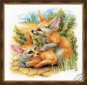 Desert Foxes by RIOLIS - 1636