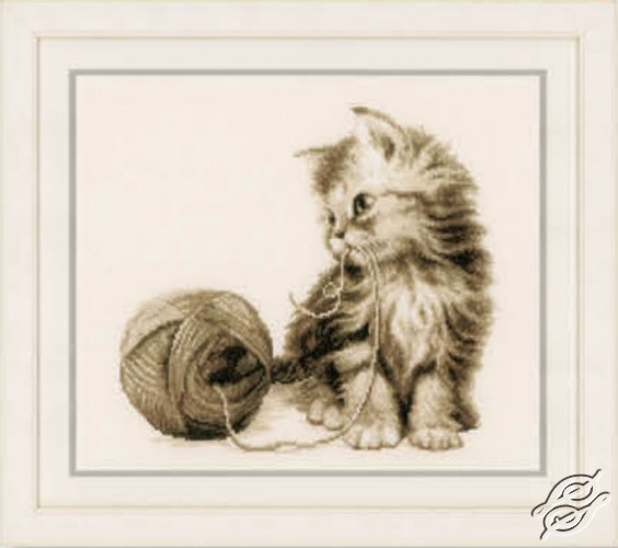 Kitten by Vervaco - PN-0162378
