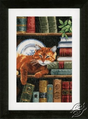 Cat on Bookshelf by Vervaco - PN-0158440