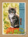Cat and Pumpkin by Vervaco - PN-0158303