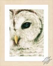 Snowy Owl by Lanarte - PN-0163781