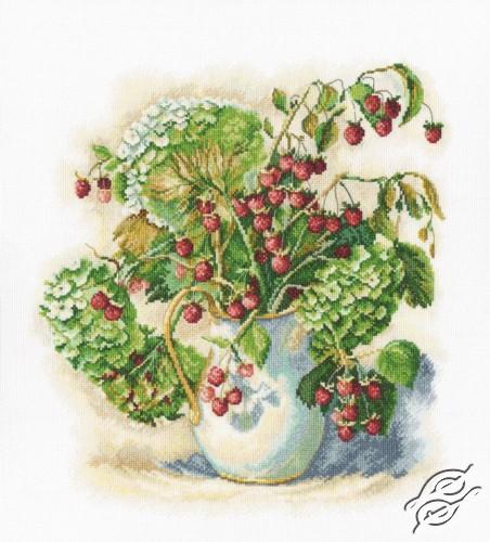 Hydrangea And Raspberry by RTO - M600