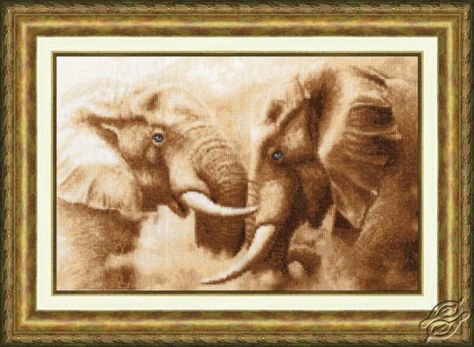 Elephants by Golden Fleece - ZHS-002