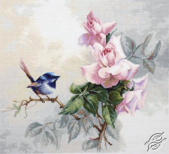 Birdie by Luca-S - B2313