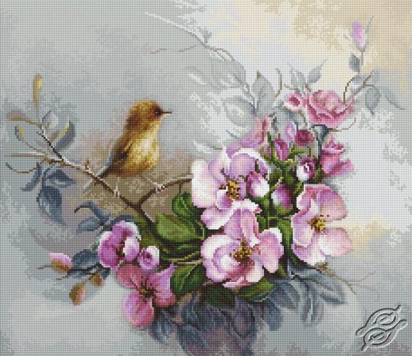 Birdie by Luca-S - B2314