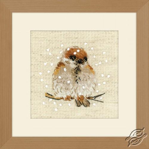 Sparrow by RIOLIS - 1680