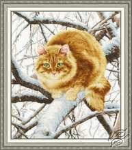 Red Cat by Golden Fleece - K-010
