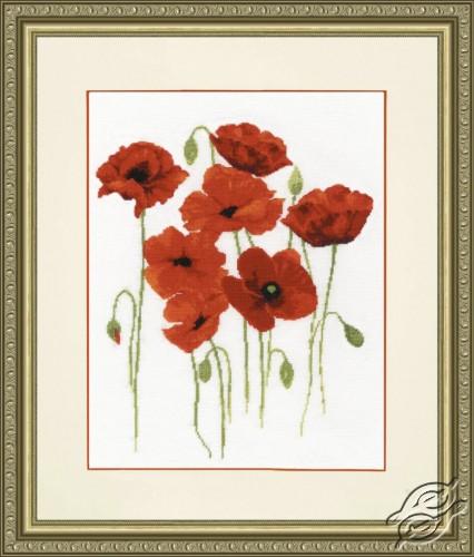 Watercolor Poppies by Golden Fleece - BR-019