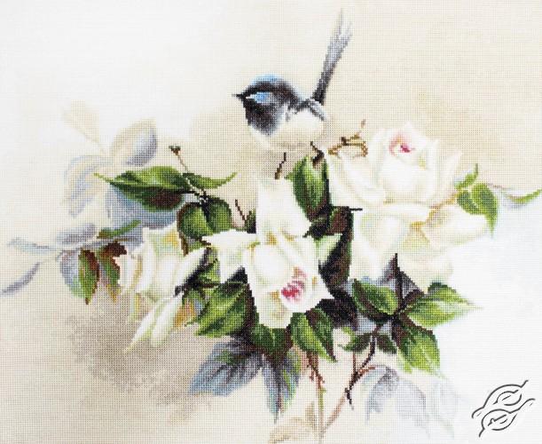 Birdie by Luca-S - BA2316