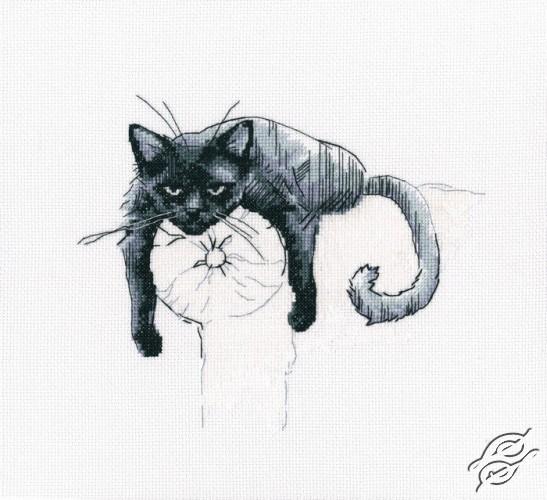 Among Black Cats I by RTO - M666