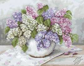 Lilacs by Luca-S - G570