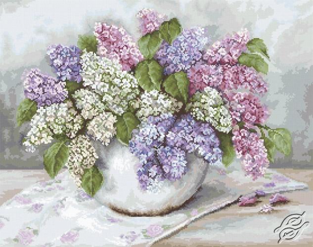 Lilacs by Luca-S - B2326
