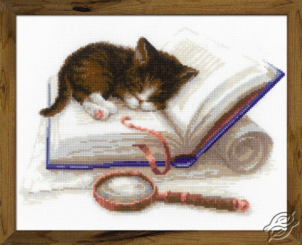 Kitten on the Book by RIOLIS - 1725