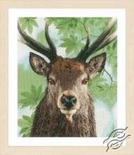 Proud Red Deer by Lanarte - PN-0168208