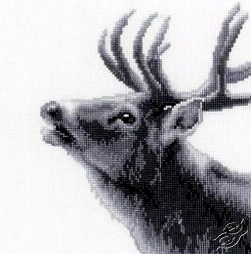 Roaring Deer by Vervaco - PN-0149793