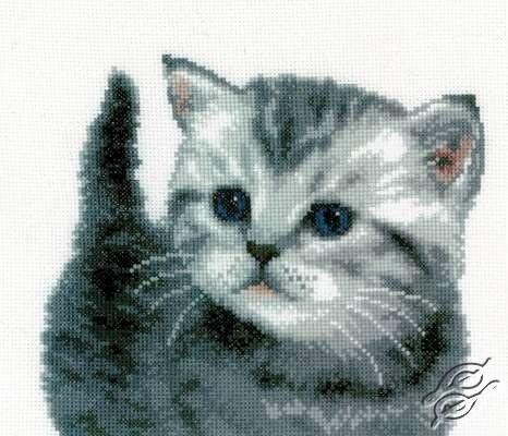 Grey Tiger Kitten by Vervaco - PN-0153747