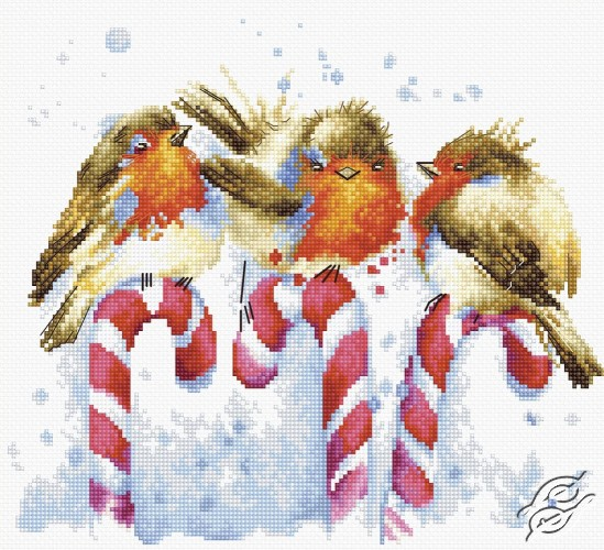 Christmas Birds by Luca-S - B1154