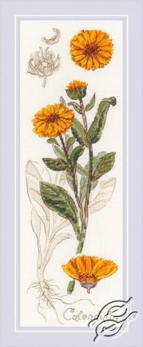 Calendula by RIOLIS - 1798