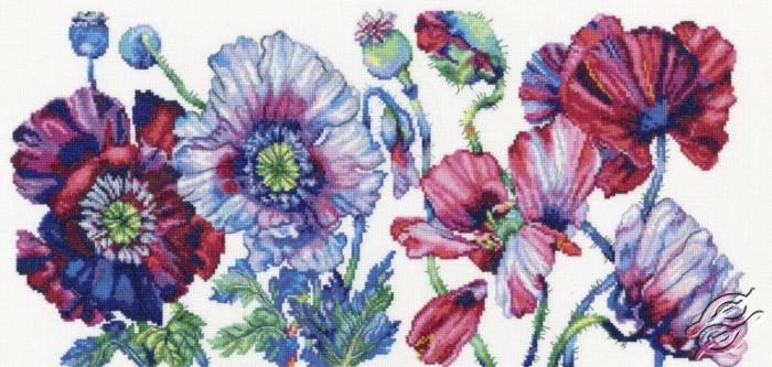 Purple Poppies by RTO - M604