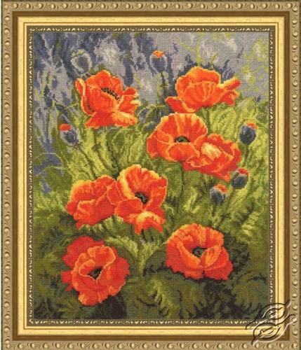 Orange Poppies by Golden Fleece - LTS-038