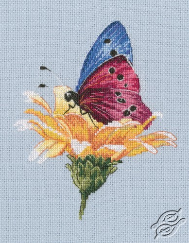 Butterfly on the Flower by RTO - M751
