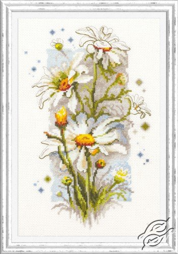 White Daisies by Magic Needle - 100-103