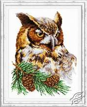 Owl by Magic Needle - 64-03