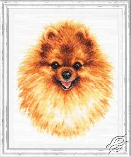 Pomeranian by Magic Needle - 59-22