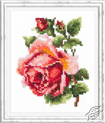 Small Rose by Magic Needle - 28-08