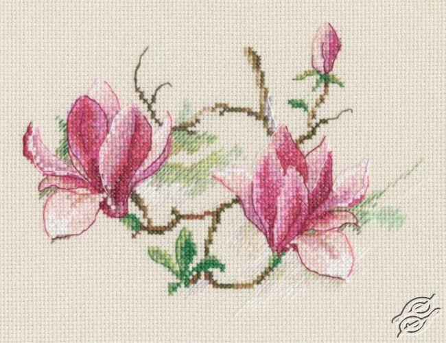 Magnolia Flowers by RTO - M730