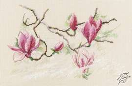 Magnolia Flowers by RTO - M732