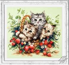 Lovely Kittens by Magic Needle - 58-12