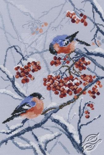 Bullfinches in Rowanberries by RTO - M578