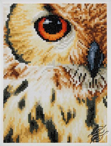 Owl by Lanarte - PN-0184320