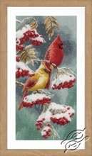 Scarlet and Snow-Cardinals by Vervaco - PN-0165887