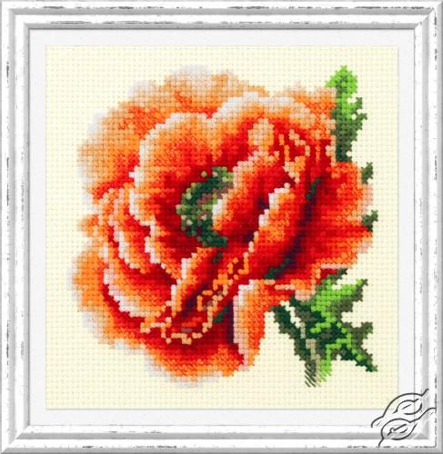 Poppy by Magic Needle - 150-012