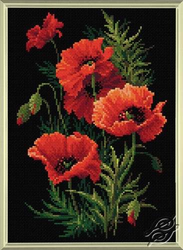 Poppies by RIOLIS - AM0007