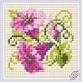 Purple Bindweed by RIOLIS - AM0030