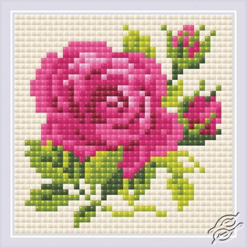 Pink Rose by RIOLIS - AM0031