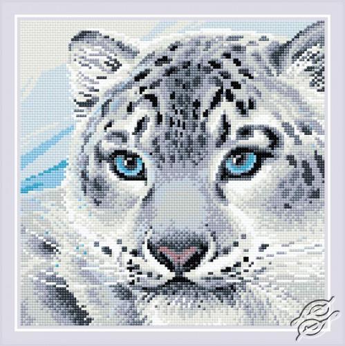 Snow Leopard by RIOLIS - AM0040