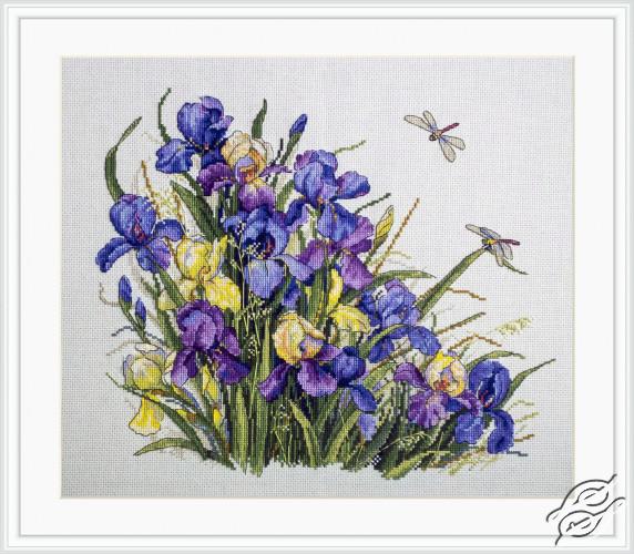 Irises by Merejka - K-122A