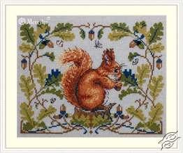 Squirrel by Merejka - K-146B