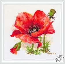 Red Poppy by Merejka - K-187