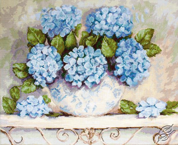 Hydrangeas by Luca-S - BA2328