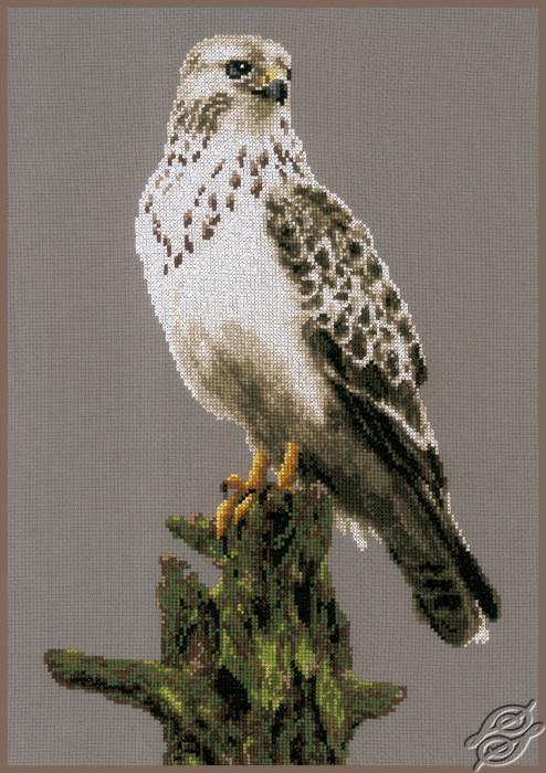 Falcon by Lanarte - PN-0172743