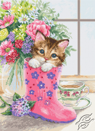 Pretty Kitten by Luca-S - B2390