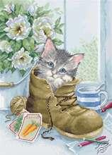 Cute Kitten by Luca-S - B2391