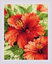 Hibiscus by RIOLIS - 1967