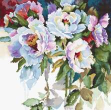 White Roses by Luca-S - B2400