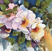 Roses by Luca-S - B2402